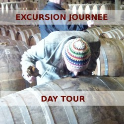 Day tour in the Cognac vineyards visiting distilleries and a cooperage