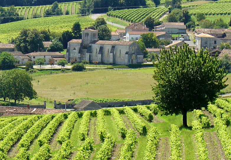 Scenery of Grande Champagne - A church in the vineyard of Cognac