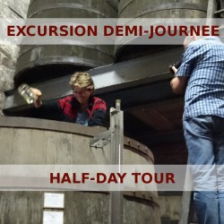 Half-day tour in the vineyards of Cognac with a guide/driver