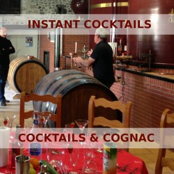 Cocktails & Cognac - Tour excl. transportation