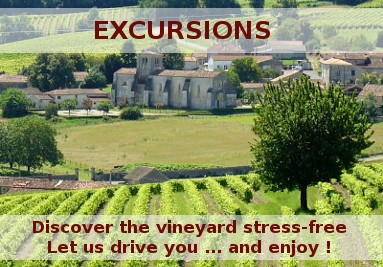 Excursions in the vineyards of Cognac