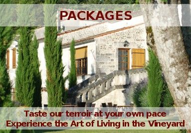 Vacation packages in the Cognac country - Stays in a guest mansion